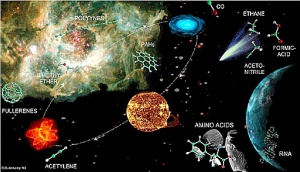 Directed panspermia refers to a theory of exogenesis that involves the sentient, purposeful seeding of life throughout the cosmos.